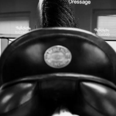 Equine Simulator Trainer Kurs