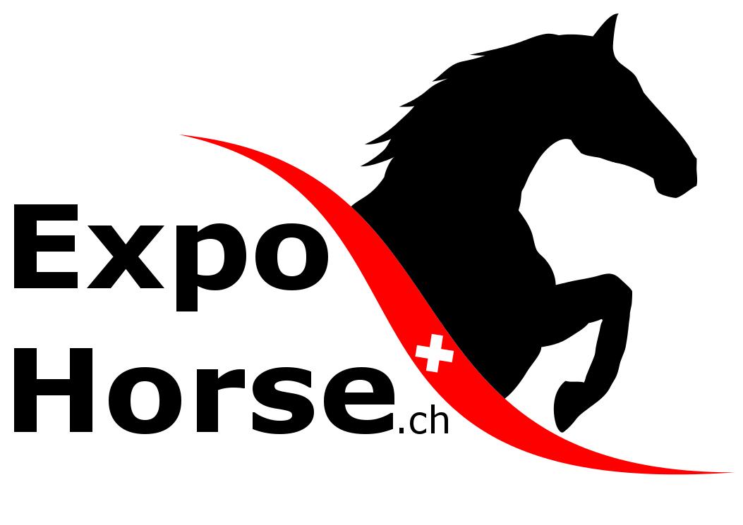 Reit- und Springsimulator München auf der Expo Horse 2019